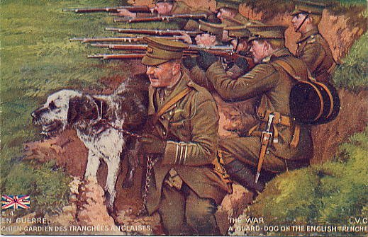 guard hound in British trenches