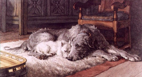 Wolfhound and Westie on rug