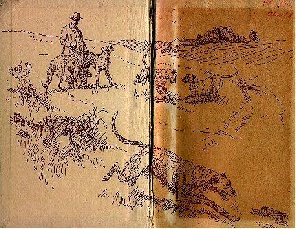drawings of wolfhounds in a meadow