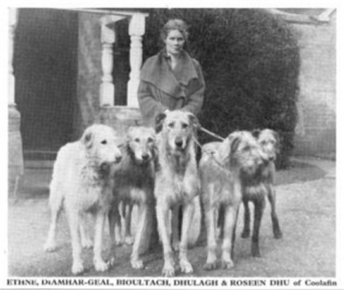 Phyllis with group of hounds