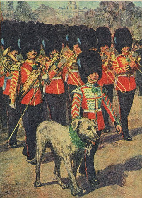 Band and mascot of the Irish Guards