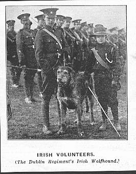 Irish Volunteers with Irish wolfhound