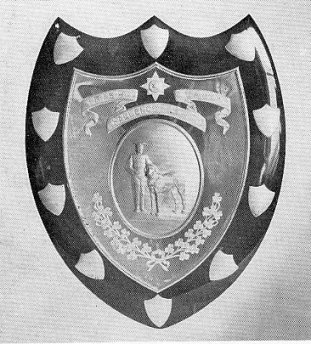 The Irish Guards Shield