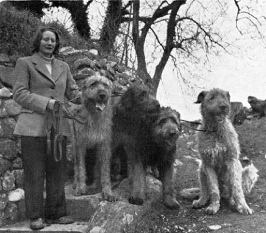 Sheelagh Seale with group of hounds