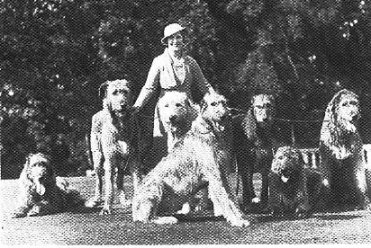 Patsy Rank with group of wolfhounds