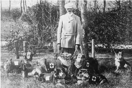 Major Richardson and dogs